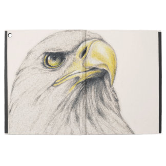 Art Drawing Of  Eagle