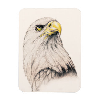 Art Drawing Of  Eagle Magnet