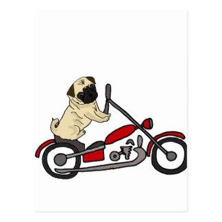 Art drôle de moto d'équitation de chien de carlin carte postale