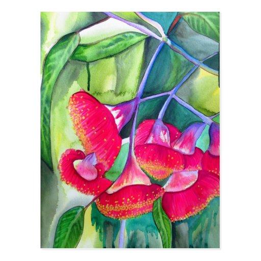 Art fleurissant rouge australien d'aquarelle de gu carte postale
