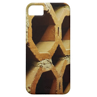 Art of Daily Walks Case For The iPhone 5
