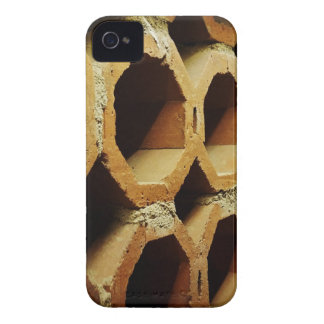 Art of Daily Walks Case-Mate iPhone 4 Cases