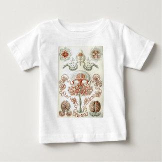 Art of Nature Vintage Ernst Haeckel Anthomedusae Baby T-Shirt