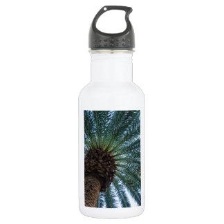Art Of The Palm Tree 532 Ml Water Bottle