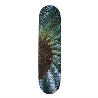 Art Of The Palm Tree Custom Skateboard