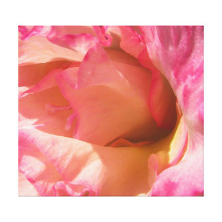 Art on Canvas Photo Vintage French Style Rose