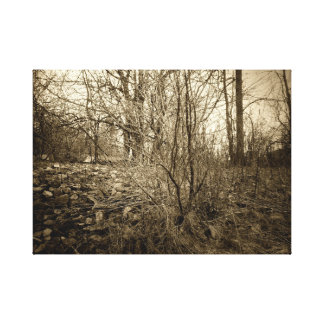 Art on Canvas Photo Vintage French Style Trees