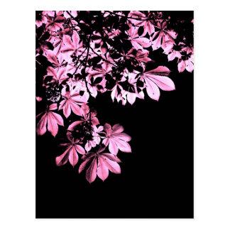Art purple foliage postcard