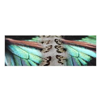 "ART rêveur de photo de papillon ""de mode de vie de"