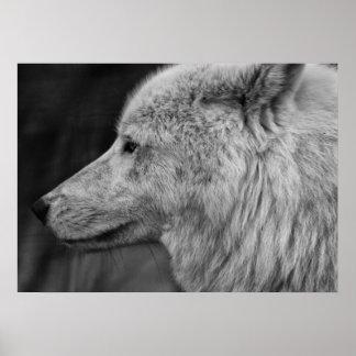 Artc Wolf Poster
