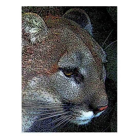 Artful Nature Cougar Postcard