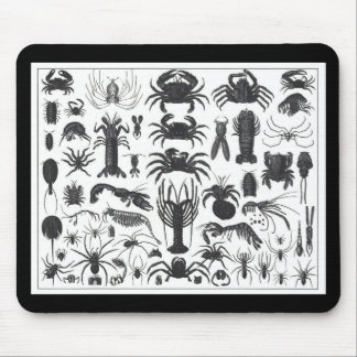 Arthropoda: spiders, crabs, lobsters B&W pattern Mouse Pad