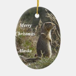 Artic Squirrel Ceramic Ornament