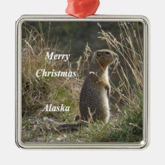 Artic Squirrel Metal Ornament