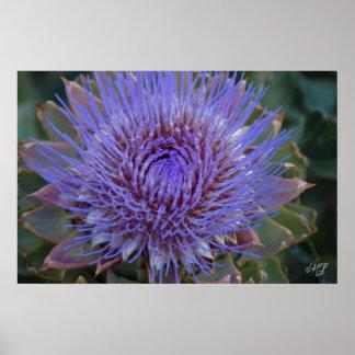 Artichoke Floral Print