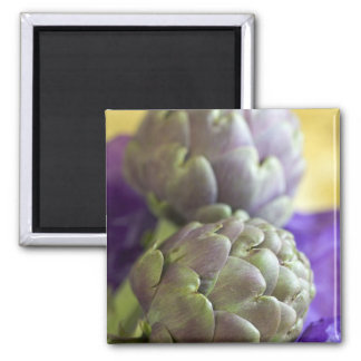 Artichokes For use in USA only.) Magnet