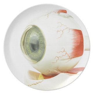 Artificial human eye plate