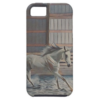 Artistic Arabian Case For The iPhone 5