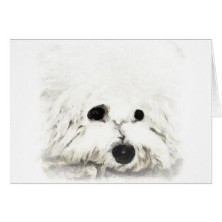 Artistic Bichon head aquarelle Card