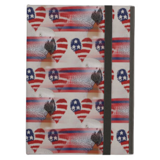 Artistic Blurry 4th of July African Grey Cover For iPad Air