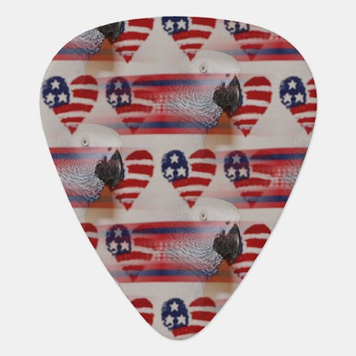 Artistic Blurry 4th of July African Grey Guitar Pick