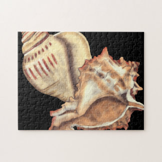 Artistic Conch Shells Jigsaw Puzzle