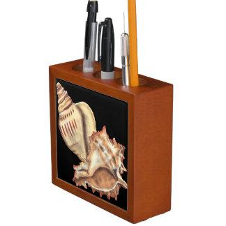 Artistic Conch Shells Pencil Holder