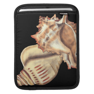 Artistic Conch Shells Sleeves For iPads