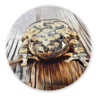 Artistic Tree Frog Decorative Ceramic Knobs
