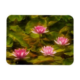 Artistic water lilies, California Rectangular Photo Magnet