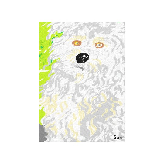 Artworksby_Sarr752 Canvas Print