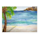 Aruba  Beach with Palm Tree Post Card
