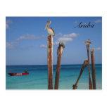 Aruba, Blue Skies in Paradise Postcard