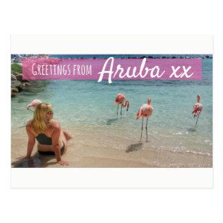 Aruba Flamingo Beach Holiday Postcard