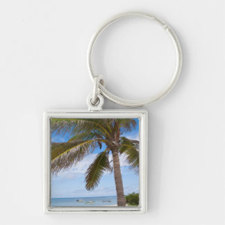 Aruba, palm tree on beach keychains