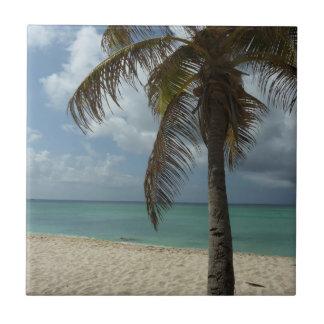 Aruban Beach I Beautiful Nature Scene Tiles