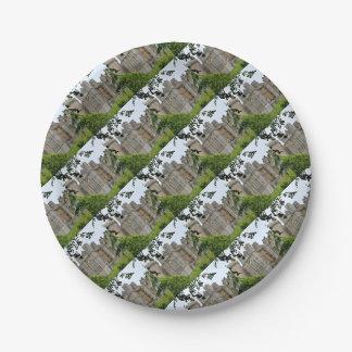 Arundel Castle, West Sussex, England Paper Plate