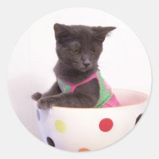 arys kitten sticker