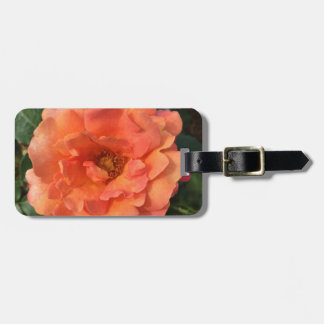 As beautiful as a rose. luggage tag