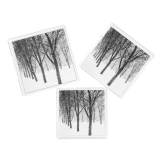 as I side with trees Acrylic Tray
