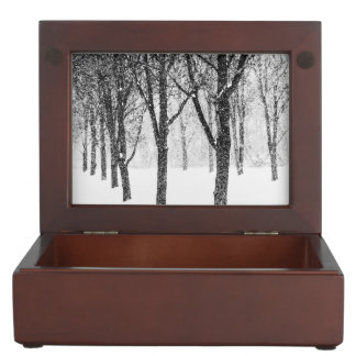 as I side with trees Keepsake Box
