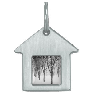 as I side with trees Pet Name Tag