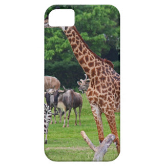 As Long As We're Together iPhone 5 Covers