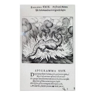 As the Salamander lives in fire Poster