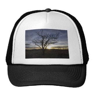 As the Sun Sets Trucker Hat