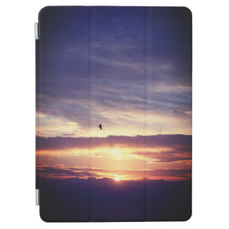 Asahi and sea and bird iPad air cover