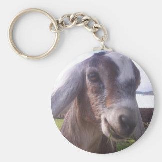 ASAPFarm Joey, ASAP Farm Key Chain