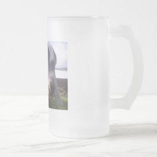 ASAPFarm Joey Frosted Glass Beer Mug