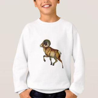Ascending Pride Sweatshirt