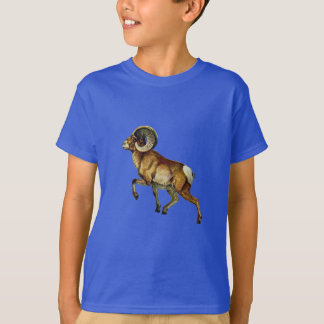 Ascending Pride T-Shirt